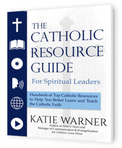 Catholic_Resource_Guide_cover_3D